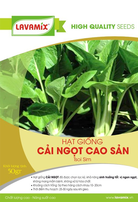 Cải ngọt cao sản